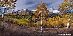 3 trees Alpine Loop 100518-9822