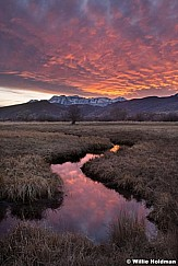 Meandering Sunset Stream 112020 4067 2