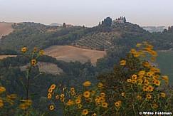 Tuscany092509 9482728