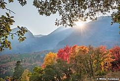 Autumn Maples Timpanogos 091920 9497 2