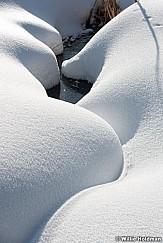 Snowy Creek 011517 01354