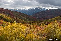 Cascade Springs Autumn 100117 6942. 7x5