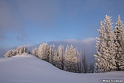 Wasatch Back Frost 122618 0958 2