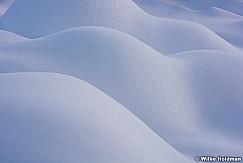 Bumps in fresh snow 122515 3