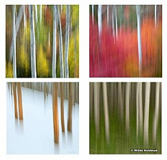 Square Aspen Abstracts
