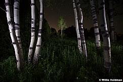Night Aspen Stars 070111 27