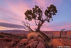 Capitol Reef Sunset 111820 207