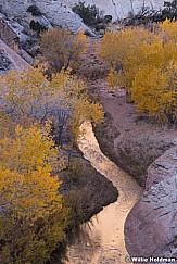 Pleasant Creek Capitol Reef 102819 3291