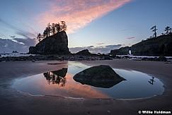 Olympic Forest Ocean Washington 102916 9595 1