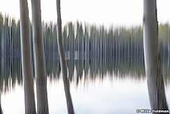 Aspen Lake Abstract 060518 9508