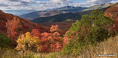 Wasatch State Park Reds 091516