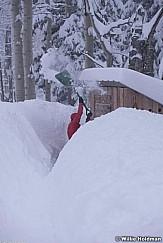 Backcountry Ski