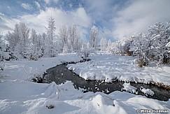Snowy Stream North Fields 013020 0940 4