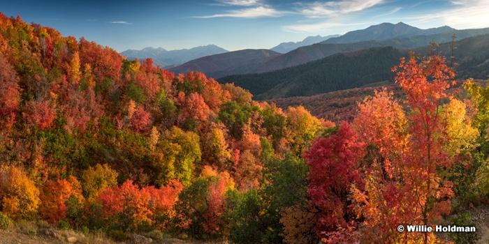 Wasatch Autumn Reds 091716