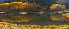 Autumn Aspen Reflection 100420 363pan