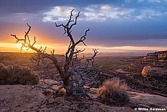 Cedar Mesa Sunrise 101819 9450
