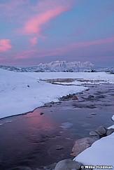 Lake Creek Pinks 013120 3297