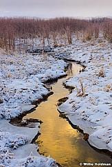 Midway Ice Stream 121116 6860 5