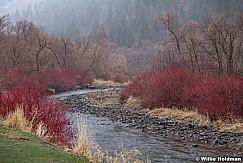 Provo Canyon Colors 032621 7145 2