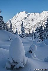 Fresh Snow Grizzly Gulch 111220 1547 6
