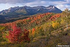 Timpanogos Autumn Color 093019 4184 7x5