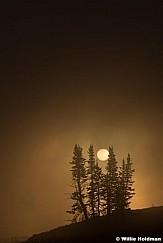 Lone Pines Mist 082615 7098