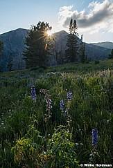 Twin-Peaks-Sunset-080915-2