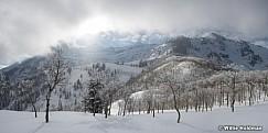 Timpanogos Frost 121616 8580