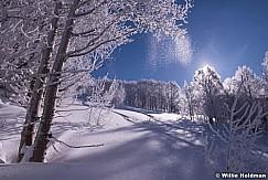Powder-Snow-Wasatch 030315 0885