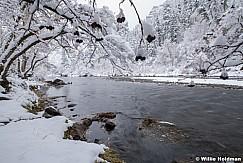 Fresh Snow Provo River 110920 1208 5