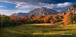 Cascade Meadow Autumn 091914