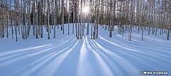 Aspen Winter Shadows