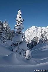 Fresh Snow Grizzly Gulch 111220 1617 6