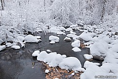 Timberlakes Winter Stream 110920 0802 4 2