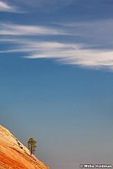 Sandstone Swirls Kanab 032012 150