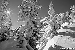 WinterwonderlandBW112510 248