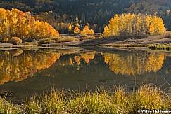 Aspens Reflection Autumn 100420 3693 3