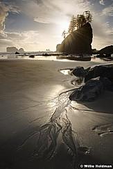 Olympic Beach Rocks 102916