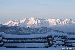 Timpanogos Fence Winter 112518 8616 4