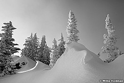 Wasatch Snow Waves 122618 1405 2BW