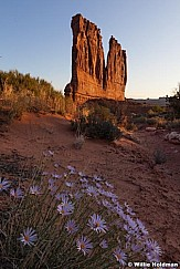 Arches Courthouse Towers 053011 505