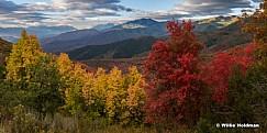 Wasatch Park Autumn Colors 091516