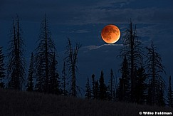 Blood Red Moon 092615