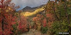 Timpanogos Autumn Pano 091416