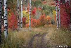 Autumn Sundance Path 092016 3