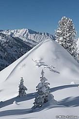 Fresh Snow Grizzly Gulch 111220 1701 3