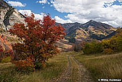 Cascade Country Road 100216 4