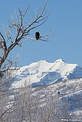 eaglebranch010211 23