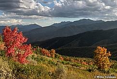 Wasatch State Park Autumn 090216 8215