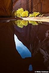 Escalante Reflection Waterhole 110616 2120 3 3